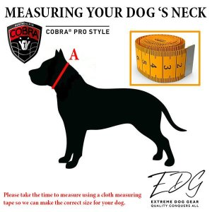 cobra clip dog collar
