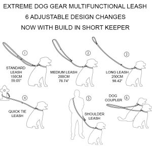 how to use a multi dog leash