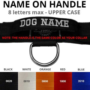 name on dog collar with handle