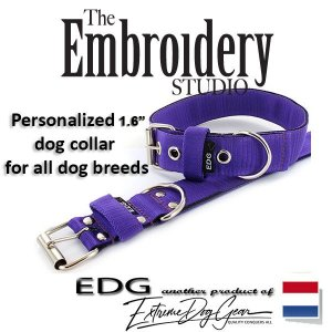 EDG dog collar personalized 1.6 inch purple