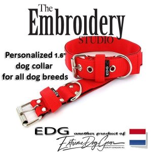EDG dog collar personalized 1.6 inch red
