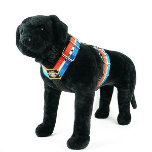 Custom dog harness 2 inch red white blue by extreme dog gear