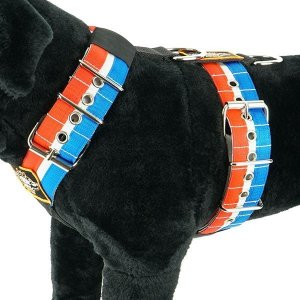 Custom dog harness 5cm red white blue by extreme dog gear