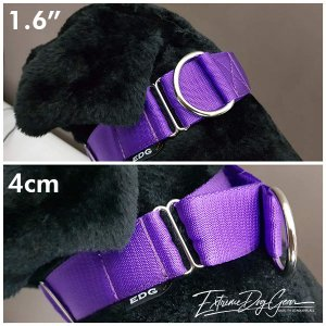 purple martingale collar medium breed