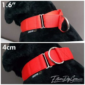 red martingale collar medium breed