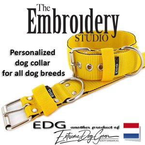 Yellow Standard or Personalized Embroidered Dog Collar 2 inch - 5cm